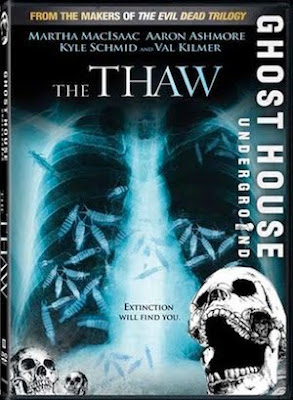 The Thaw Cover