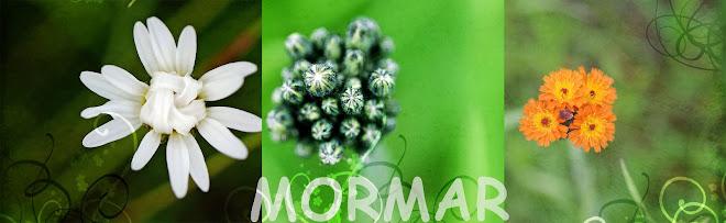 mormar
