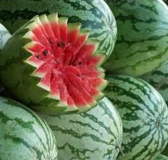 melancia.jpg