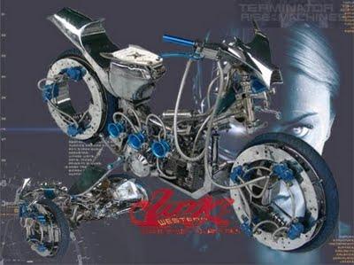 shogun bike because the capital anatomy is absolutely altered with the