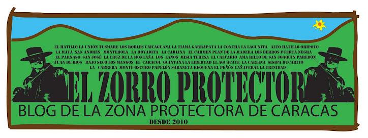 EL ZORRO PROTECTOR