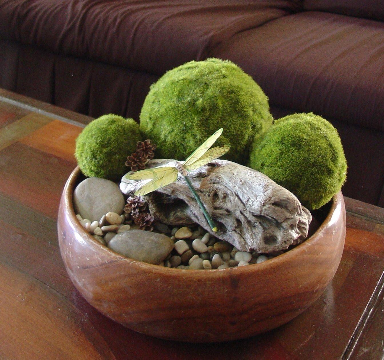 Indoor Moss Garden Greenfain. How To Take Care Of Moss Martha Stewart