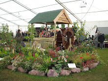 The Millers Garden - Dundee Flower Show Sept 2010