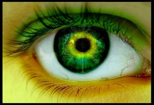 Mis ojos verdes: Mis ojos verdes