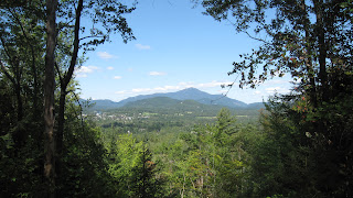 A Guided Trail Run at Henry's Woods in Lake Placid