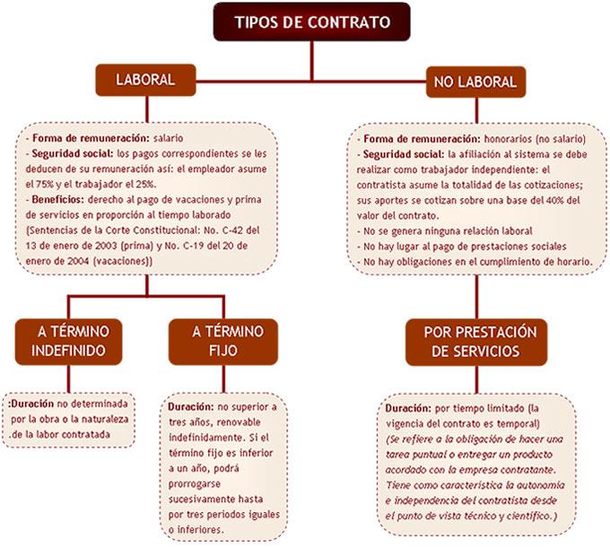 Nivel De Empleo Tipos De Contrato
