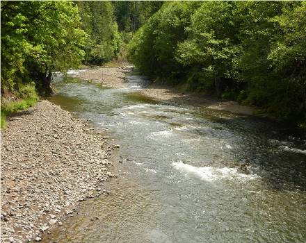 Proposed location for Chehalis River dam