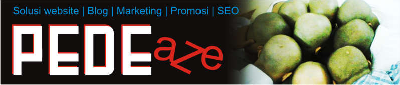 PDAZE : Belajar SEO | Solusi website | Blog | Marketing | Promosi
