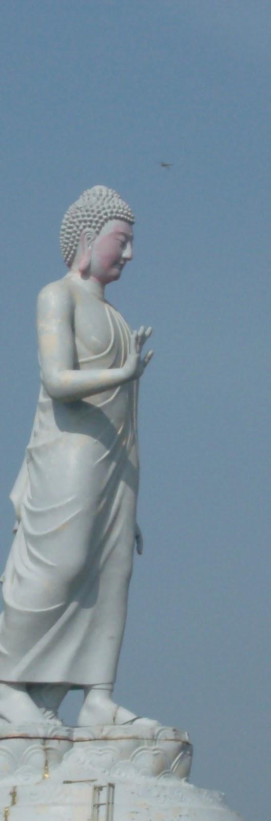 [Buddha_tall_thin.jpg]