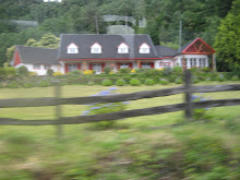 Casas camino a NELTUME