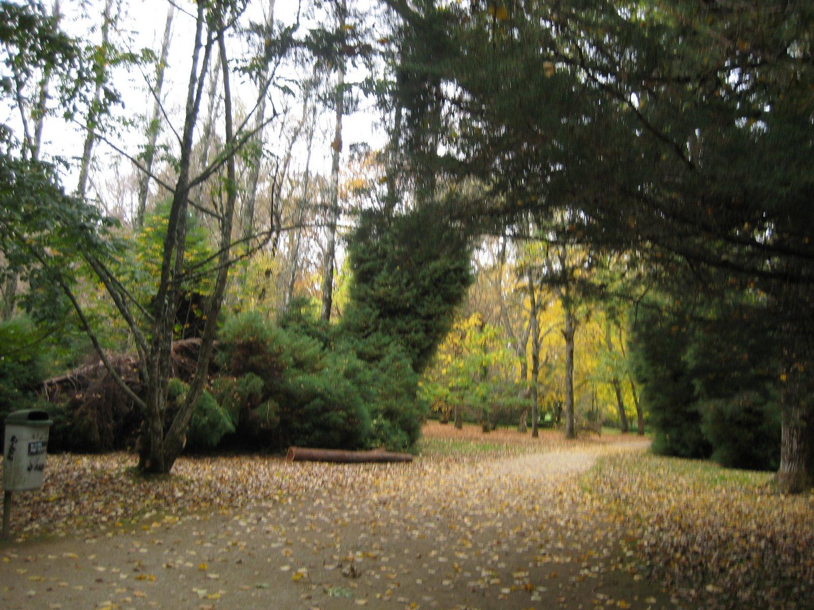 Hermoso Jardín Botánico