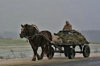 Russian Village Life