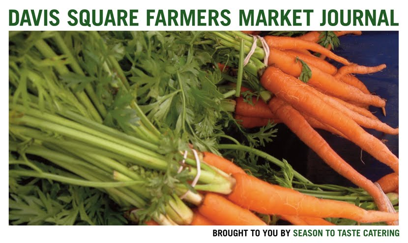 Davis Square Farmers Market Journal