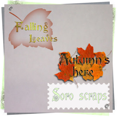 http://soroscraps.blogspot.com/2009/09/some-wordart-to-join-with-fall-kit-pu.html