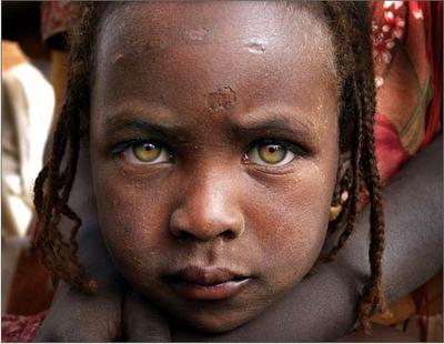 Darfur essay question