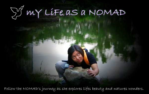 my Life as a NOMAD