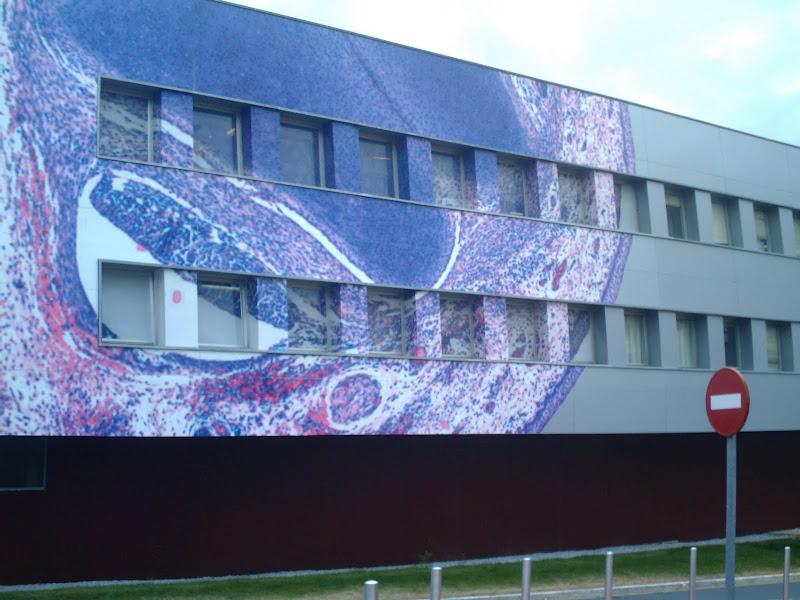 Edificio del Hospital Universitario Marqués de Valdecilla de Santander