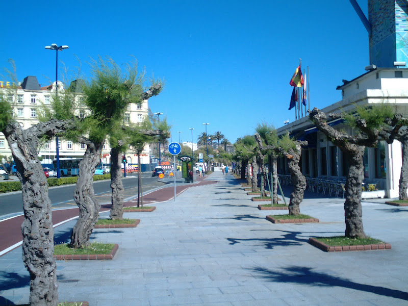 Avenida de Castañeda al fondo