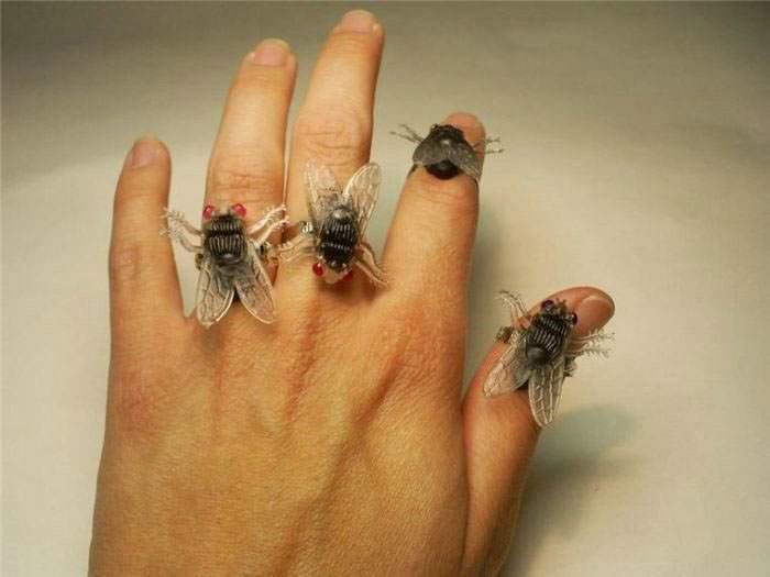Fly Ring