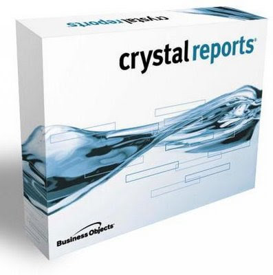 Crystal Reports XI Server Edition (1 dvd)