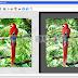 Programma gratuito per trasformare foto in disegni a colori