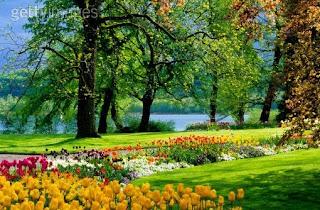 un jardin martes 26 de febrero de 2008 poemas romanticos yaz award