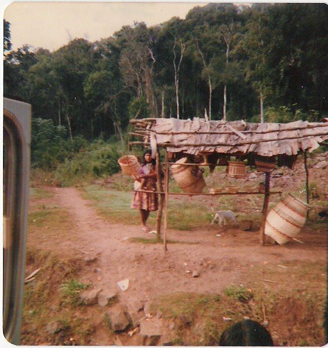 [indígenas+de+Misiones.+Argentina.ong+VIDA]