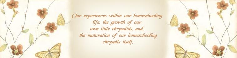 Chrysalids Journey