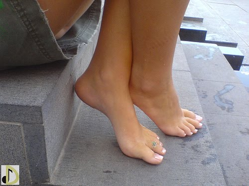 Pies Sexy 103
