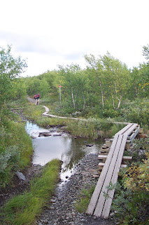 Path to Abiskojaure, Kungsleden - Kings Trail - King of Trails