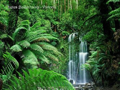 Australia - El Paraiso Indomable