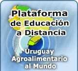 IICA - EDUCACION A DISTANCIA