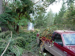 Hauling branches to burn pile, photo by Robin Atkins