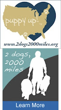 2 Dogs 2000 Miles