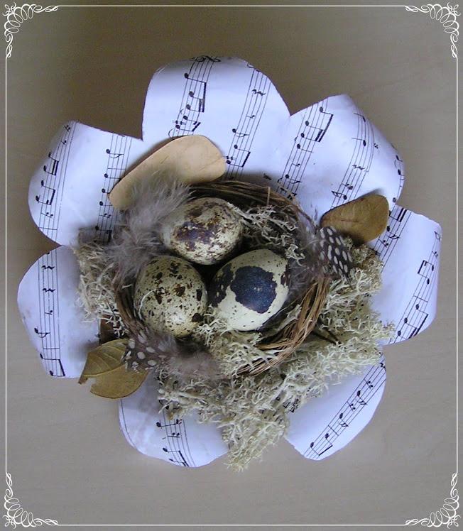 Vogelnestje в bladmuziek
