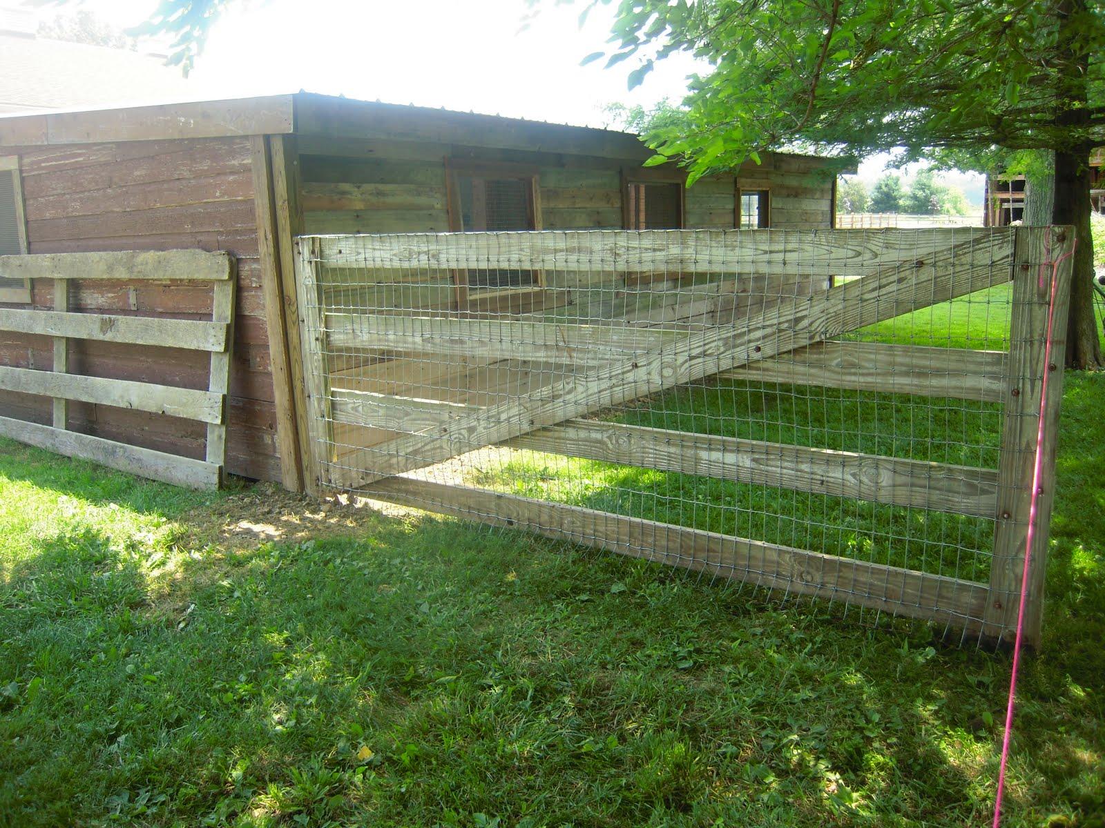 Chicken wire fence gate fencing