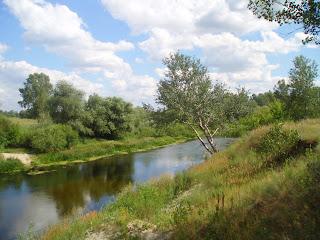 Пруд или река...кто его знает
