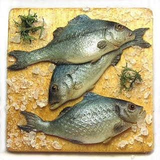 Kiva 39 s miniatures december 2009 for Edible hawaiian fish