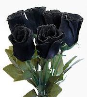 poze cool trandafiri negri