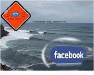 Adere já ao SOS RABO DE PEIXE no FACEBOOK