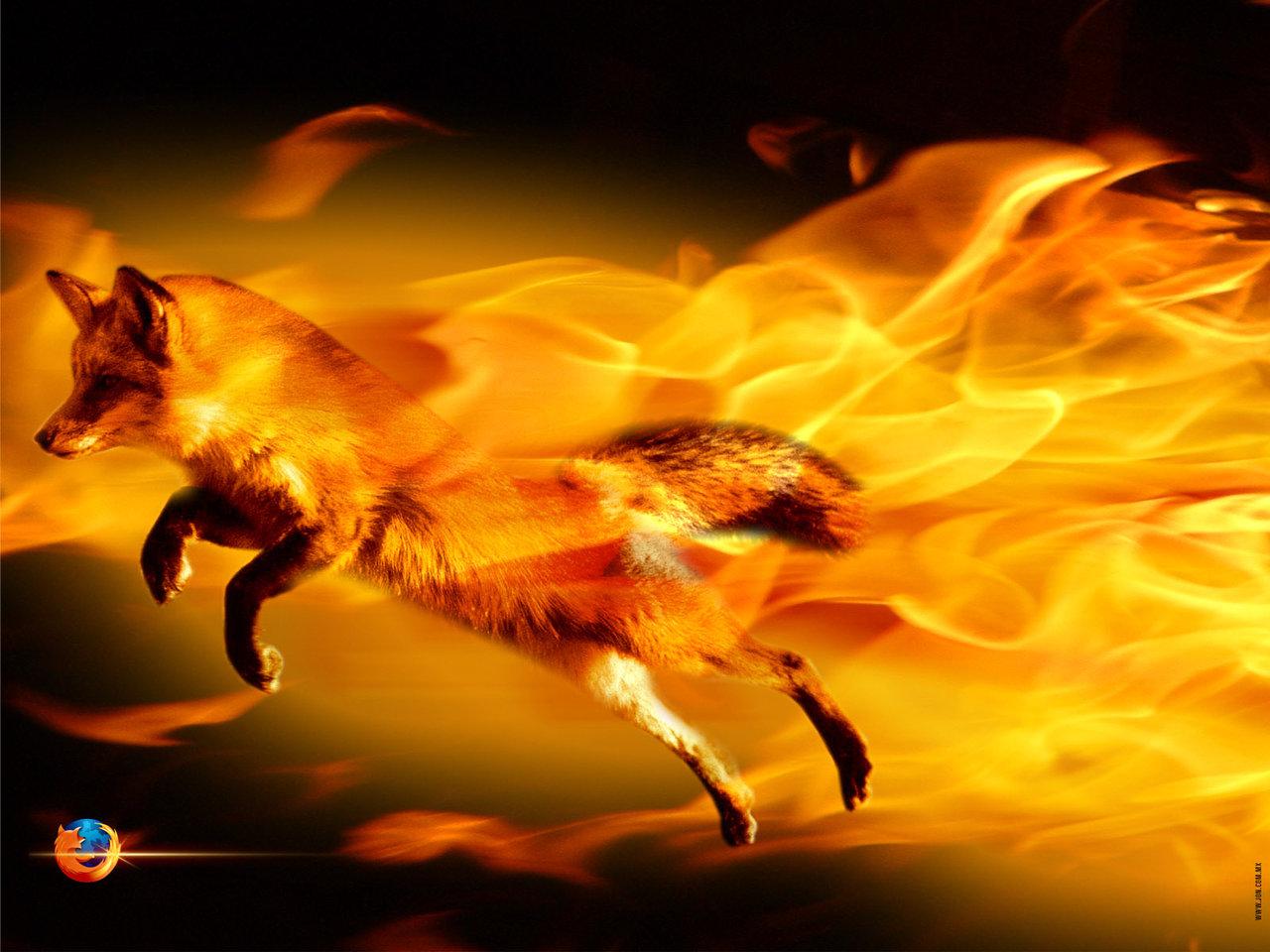 http://1.bp.blogspot.com/_TY1OI1CkW0I/S_NBbwVAC0I/AAAAAAAAAAc/sLKQDQQrkOs/s1600/firefox-wallpaper-firefox-404961_1280_960.jpg