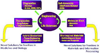 BioMEMS and Bionanotechnology