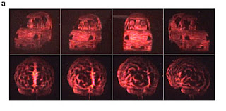 holographic Views of an automobile (top) and of a human brain (bottom)