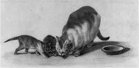 Cat and two kittens, Library of Congress, Prints & Photographs Division, [reproduction number, LC-USZ62-58438.