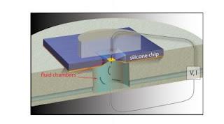 Nanopore Schematic