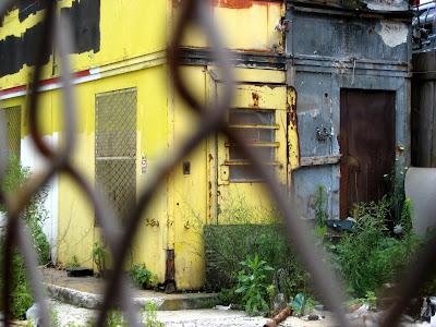 Post Apocalypse New York City