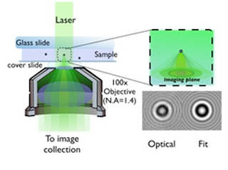 Microscopic Systems Through Holographic Video