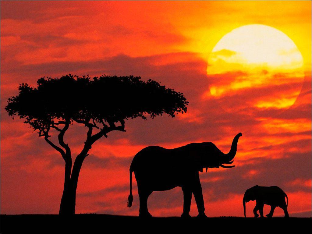 [Silhouetted_Kenya.jpg]