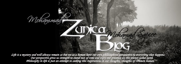 My Zunica Blog
