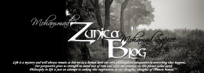 My Zunica Blog